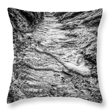 It's A Rush Browns Beach  Throw Pillow