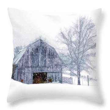 It's Cold Outside Throw Pillow by Mary Timman