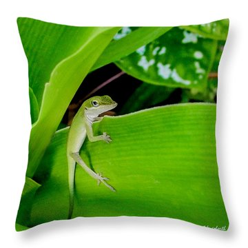 It's Easy Being Green Squared Throw Pillow by TK Goforth