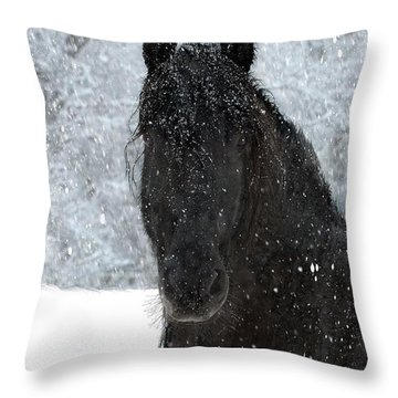 It's Friesian Out Here Throw Pillow