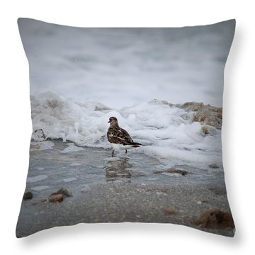 It's Fun Throw Pillow by George Mount