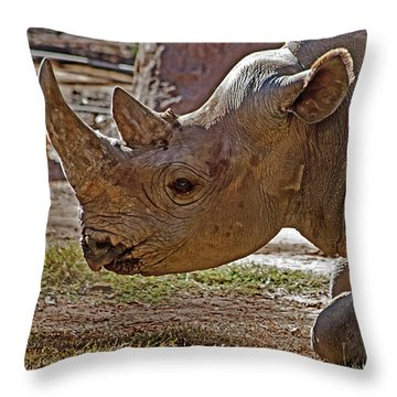 Its My Horn Not Your Medicine Throw Pillow