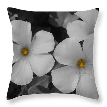 Throw Pillow featuring the photograph Its Not All Black And White by Janice Westerberg