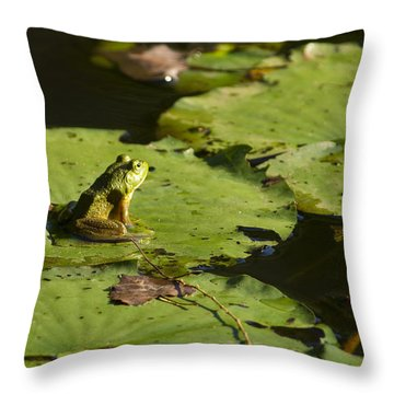 It's Not Easy . . . Throw Pillow