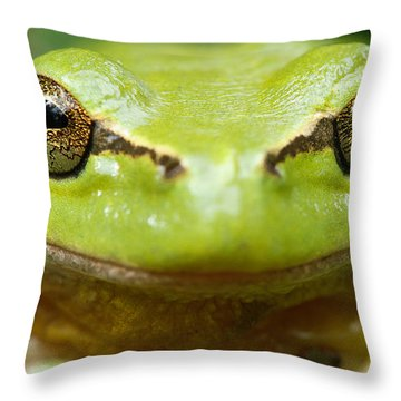 It's Not Easy Being Green _ Tree Frog Portrait Throw Pillow by Roeselien Raimond