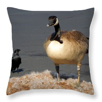 Throw Pillow featuring the photograph It's Not Mine by Pete Trenholm