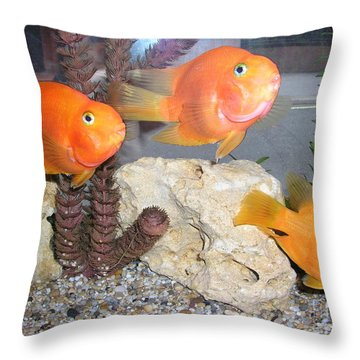 It's Not Polite To Stare Throw Pillow by Bev Conover