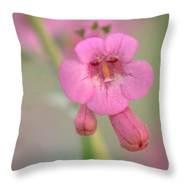 It's Pink Throw Pillow
