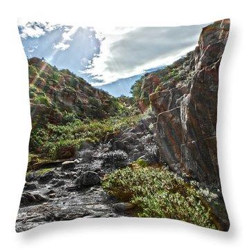 Throw Pillow featuring the photograph Its Raining Rainbows by Miroslava Jurcik