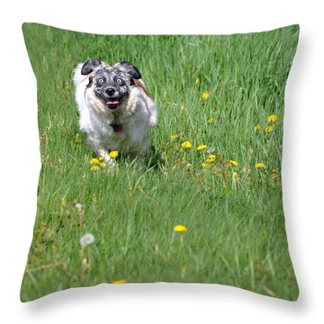It's Spring - It's Spring Throw Pillow
