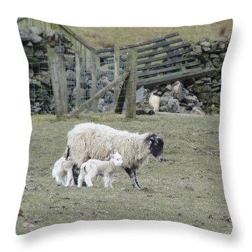 It's Spring Time Throw Pillow