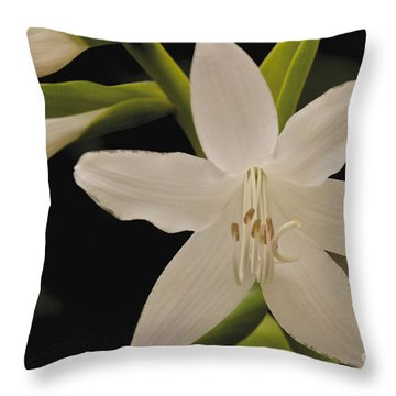 Its Summer Throw Pillow