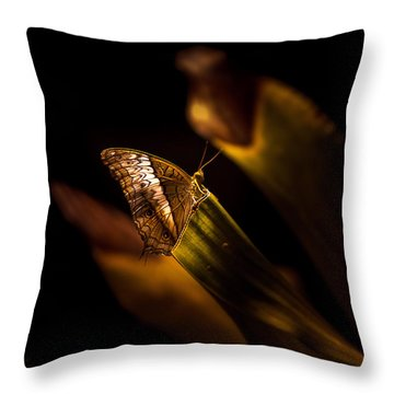 Its The Simple Things By Denise Dube Throw Pillow