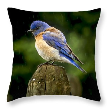 Its Wet Out Here Throw Pillow by Jean Noren