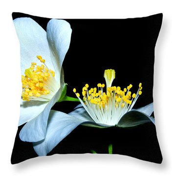 It's You And Me...together Throw Pillow by Tammy Schneider