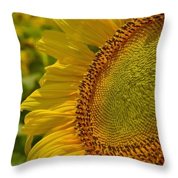 Itsy Bitsy Throw Pillow