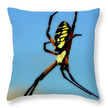 Itsy Bitsy Spider Throw Pillow by Karen Wiles