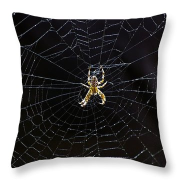 Itsy Bitsy Spider My Ass 2 Throw Pillow by Steve Harrington
