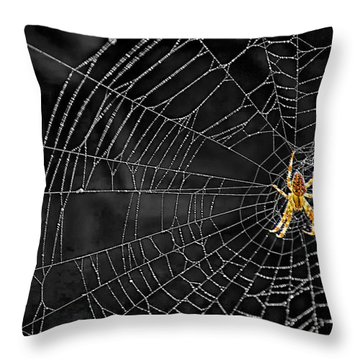 Itsy Bitsy Spider My Ass 3 Throw Pillow