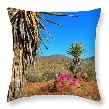 Pink In The Desert Throw Pillow