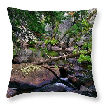 Throw Pillow featuring the photograph Ivanhoe Serenity by Jeremy Rhoades