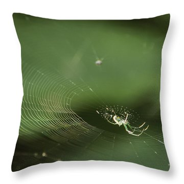 I've Been Wainting For So Long Throw Pillow