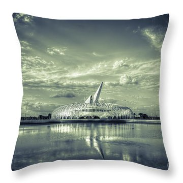 Ivory Tower Of Knowledge- Split Tone Throw Pillow