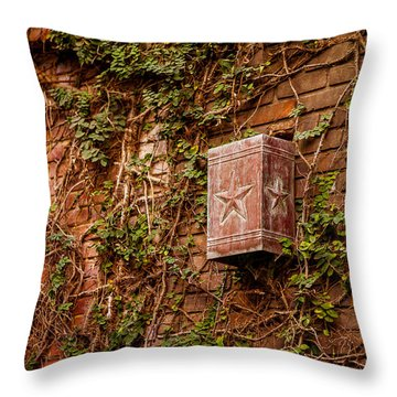 Ivy League Star Throw Pillow