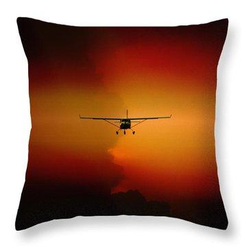 Jabiru Sunset Throw Pillow