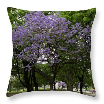 Jacaranda In The Park Throw Pillow