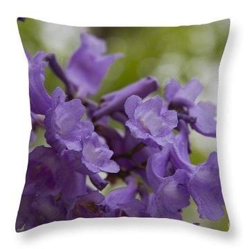 Jacaranda Mimosifolia Makawao Maui Hawaii Throw Pillow by Sharon Mau