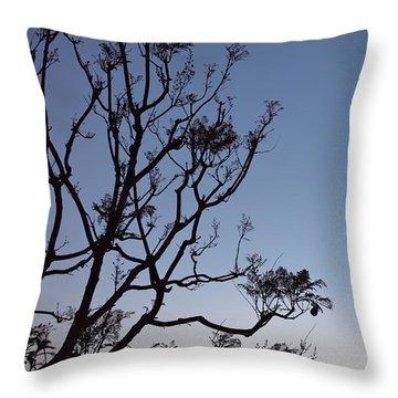 Jacaranda Sunset Throw Pillow