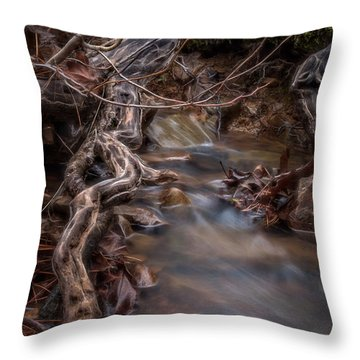 Jack Creek 2 Throw Pillow
