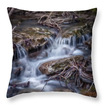 Jack Creek Throw Pillow