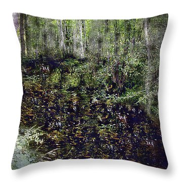 Jack Kell's Woods Throw Pillow by RC DeWinter