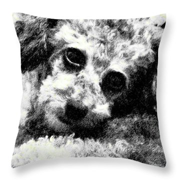 Jack Throw Pillow by Lenore Senior
