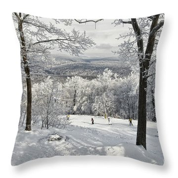 Throw Pillow featuring the photograph Jack Rabbit by Lois Bryan