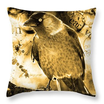Jackdaw Throw Pillow by Tommytechno Sweden