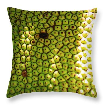 Jacked Up Fruit Throw Pillow by Chuck  Hicks