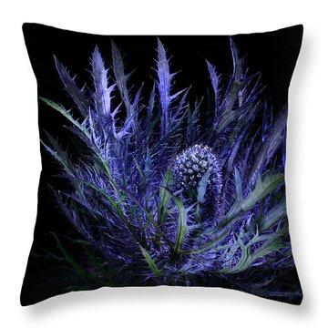 Jackpot Blue Thistle Throw Pillow