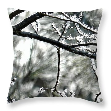 Throw Pillow featuring the photograph Jack's Artwork by Julia Hassett