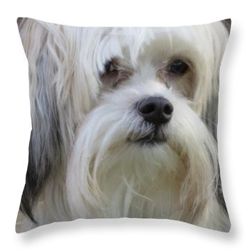 Jack's Bad Hair Day Throw Pillow
