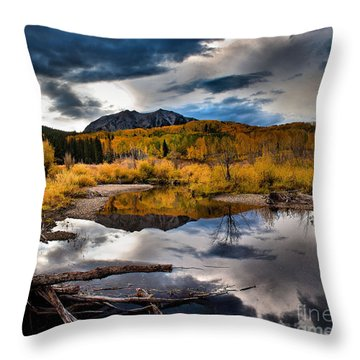 Jack's Pond Throw Pillow by Steven Reed