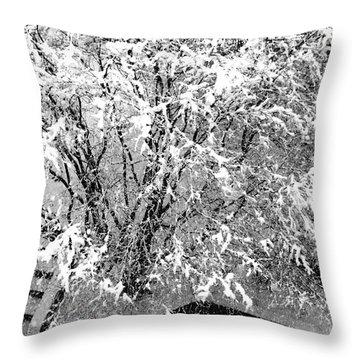 Jackson Pollock's Blizzard Throw Pillow