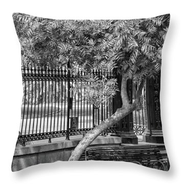Jackson Square Bench And Tree Throw Pillow
