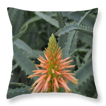 Jagged Beauty Throw Pillow by Tim Good