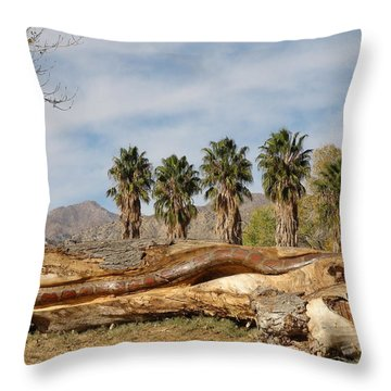 Throw Pillow featuring the painting Jagger by Dan Redmon