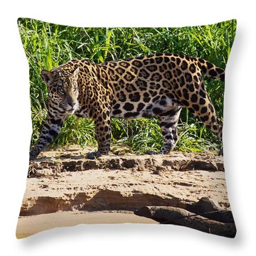 Jaguar River Walk Throw Pillow