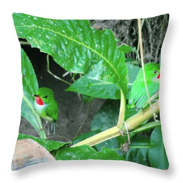 Jamaican Toadies Throw Pillow by Carey Chen