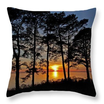 James River Sunset Throw Pillow by Suzanne Stout